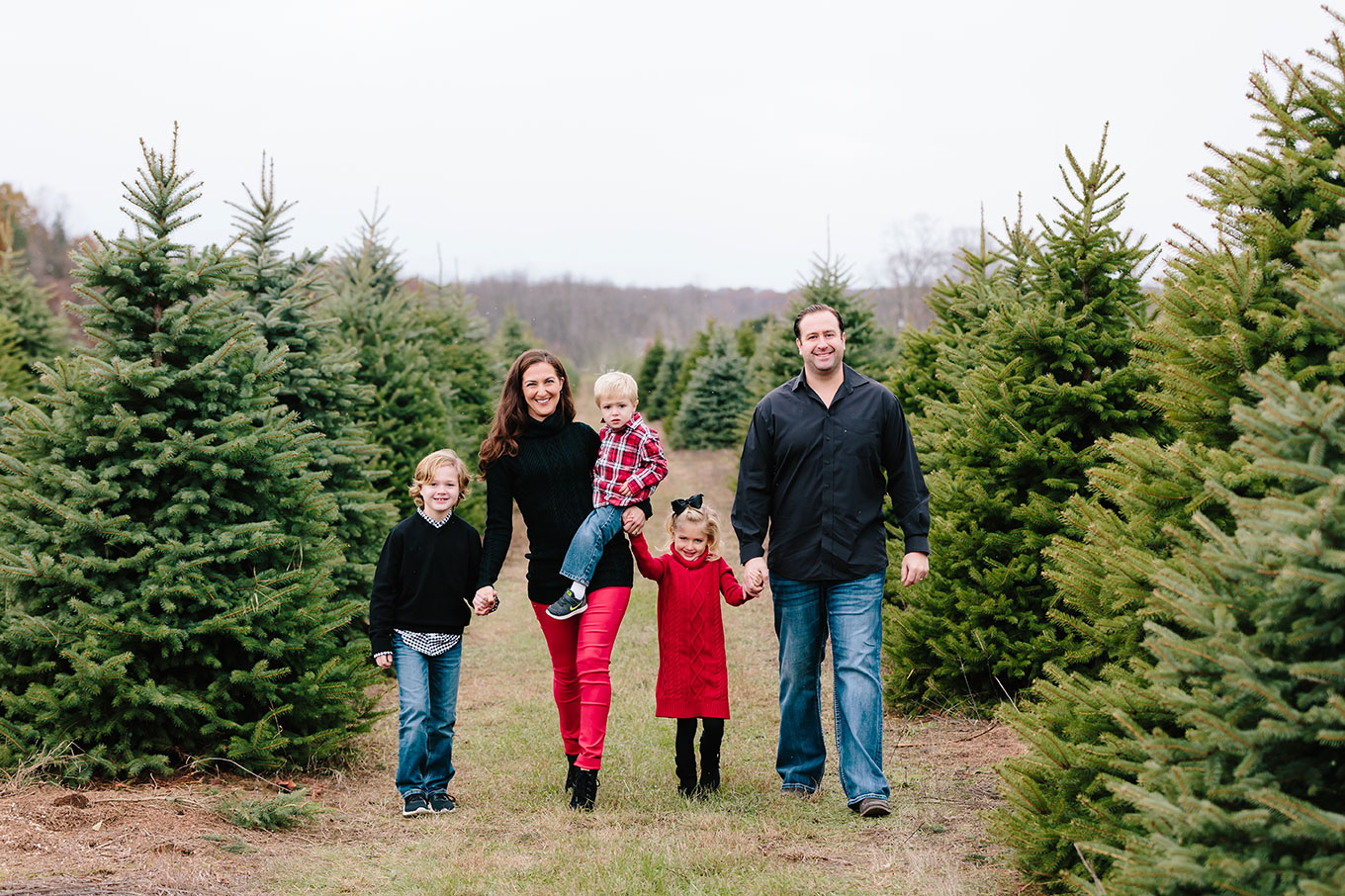 Christmas Tree Farm Family Pictures Mae Photo