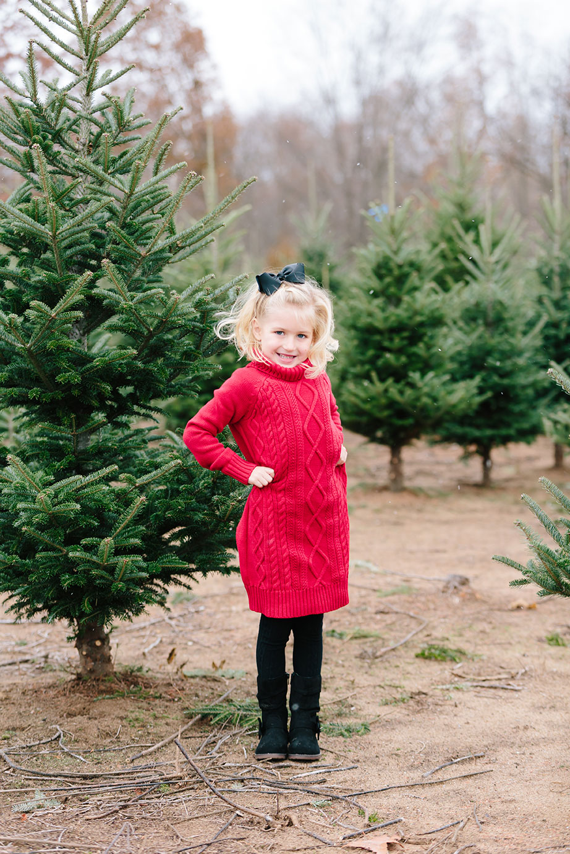 Christmas Tree Farm Family Pictures Mae Photo